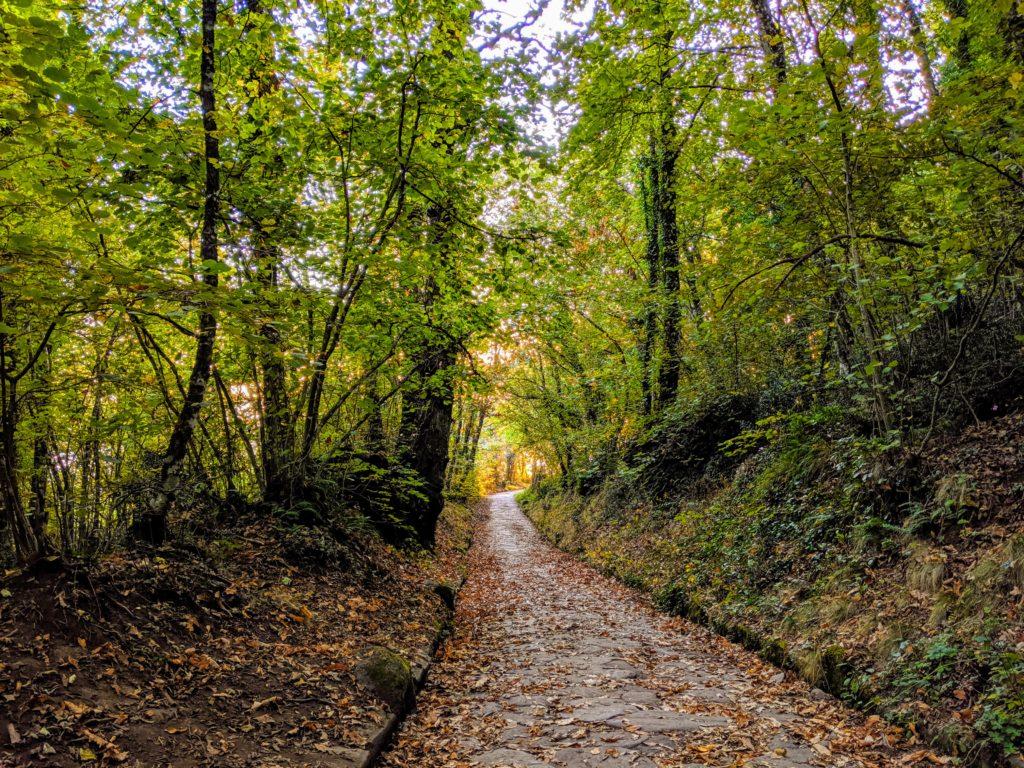 Early fall along the Via Sacra