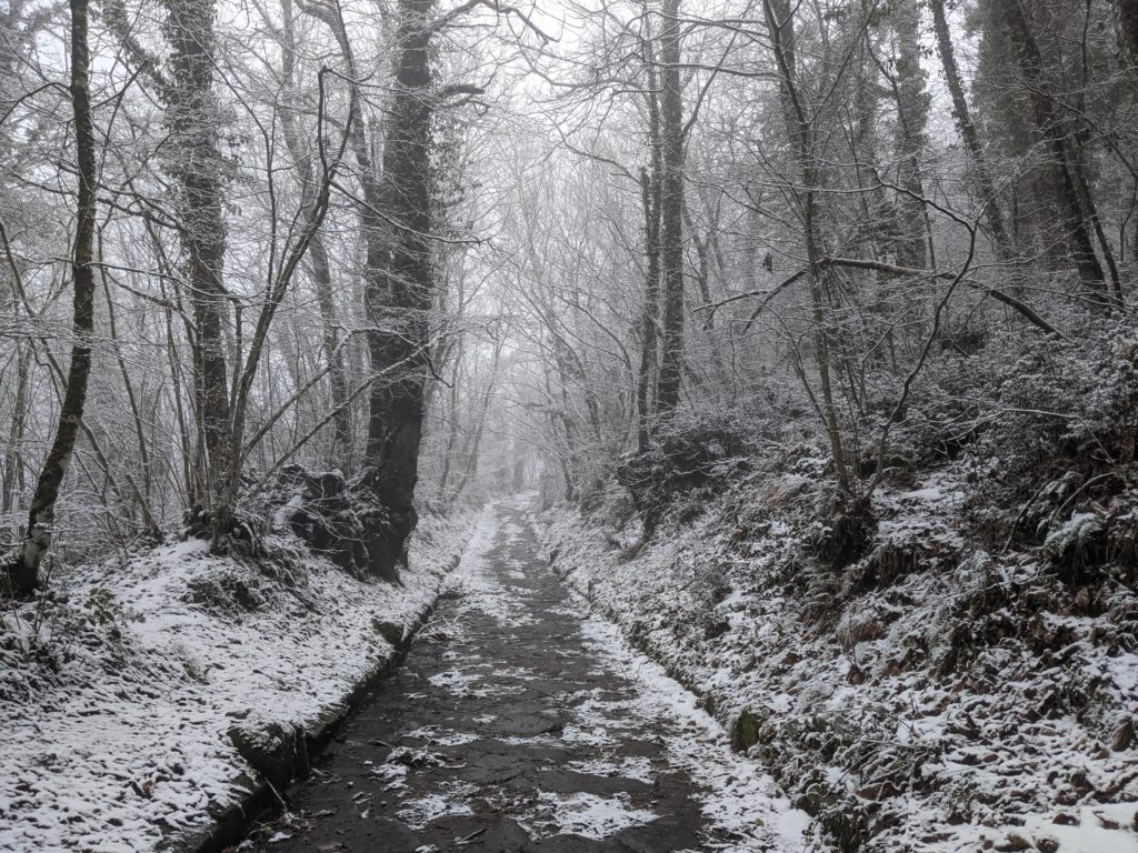 Snow on Via Sacra